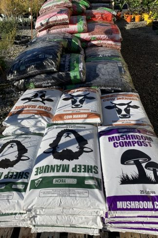 Pearcedale Garden Centre, garden centre Pearcedale, garden centre, garden nursery, grasses, lomandra, kangaroo paws, flax, weed killer, garden fertiliser, fertiliser, eraze weed killer, garden fungicide, fungicide, garden insecticide, compost, garden compost, mushroom, compost, sheep manure, manure, cow manure, cyad, indoor plants, bangalow palms, palms, palm trees, hydrangea plants, lavandar, coco palm, cotton palm, Pearcedale Garden Centre, garden centre Pearcedale, garden centre Pearcedale, garden nursery Pearcedale, grasses Pearcedale, lomandra Pearcedale, kangaroo paws Pearcedale, flax Pearcedale, weed killer Pearcedale, garden fertiliser Pearcedale, fertiliser Pearcedale, eraze weed killer Pearcedale, garden fungicide Pearcedale, fungicide Pearcedale, garden insecticide Pearcedale, compost Pearcedale, garden compost Pearcedale, mushroom Pearcedale, compost Pearcedale, sheep manure Pearcedale, manure Pearcedale, cow manure Pearcedale, cyad Pearcedale, indoor plants Pearcedale, bangalow palms Pearcedale, palms Pearcedale, palm trees Pearcedale, hydrangea plants Pearcedale, lavandar Pearcedale, coco palm Pearcedale, cotton palm Pearcedale,